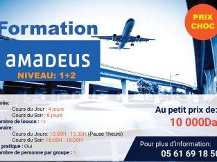 Formation Amadeus niveau 1+2