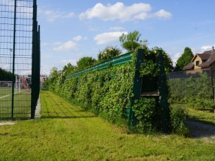 Mur anti bruit végétalisé