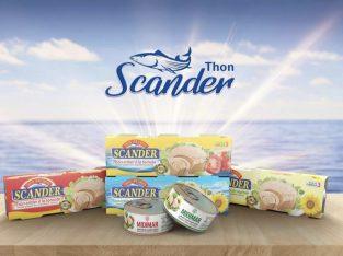 Thon et sardine