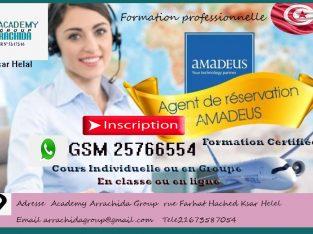 formation e Amadeus agent de voyage